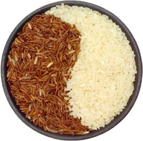 Brown_Rice_or_White_Rice_for_Weight_Loss